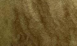 Panther Sandstone